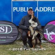 sheepdog trial four nations