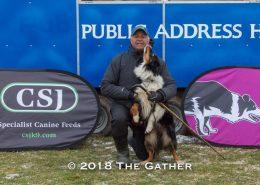 sheepdog trial four nations