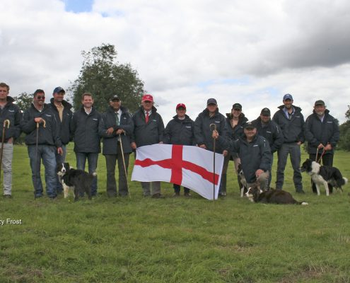 English National Sheepdog Trials 2016