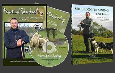 dvd-case-book copy