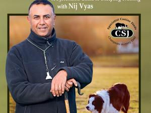 Practical Shepherding Online Chapters